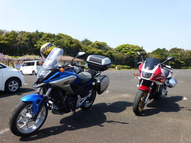 hiyamizu006.jpg