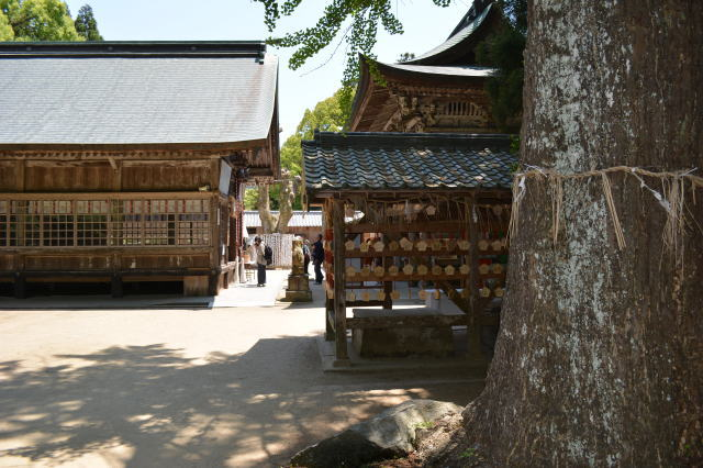 itoshima012.jpg